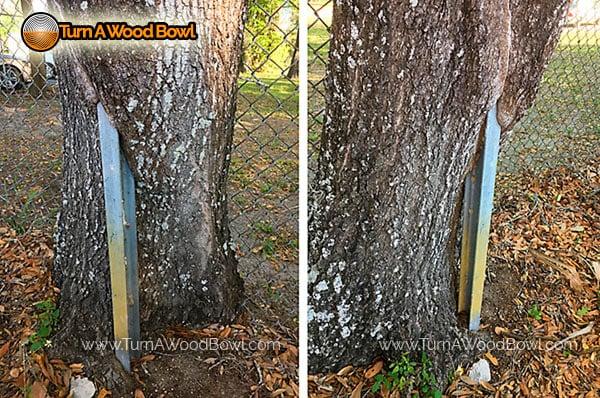 Free Wood Hazards Avoid