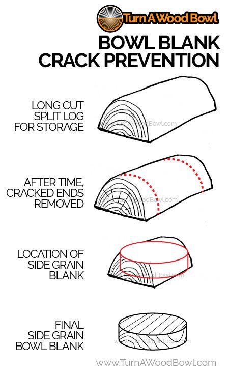 How Cracks Form Wood Logs Bowl Blank Prevention