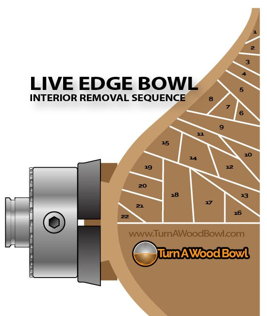 Live Edge Wood Bowl Cut Sequence